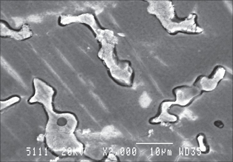 Figure 5: SEM photograph of corroded specimen at 2000 × magnification
