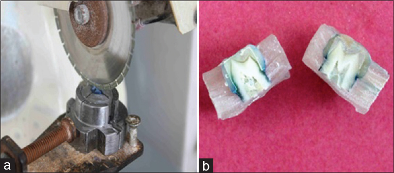 Figure 3: (a) Sectioning of specimens using diamond disc attached to die cutting machine and (b) cut sections